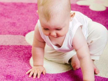 Fix carpet mould in Sydney
